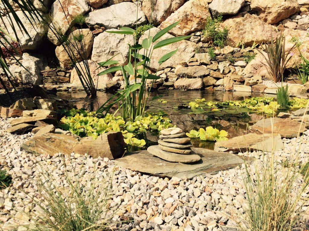 Comment créer un bassin dans son jardin? 5