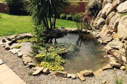 Comment créer un bassin dans son jardin? 6