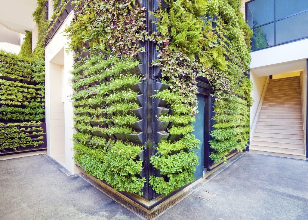 Vegetaliser ses murs c'est tendance ! 1
