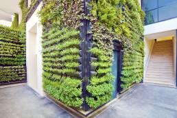 Vegetaliser ses murs c'est tendance ! 4
